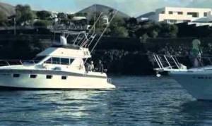 Imagen del certamen de pesca de altura de Puerto Calero.