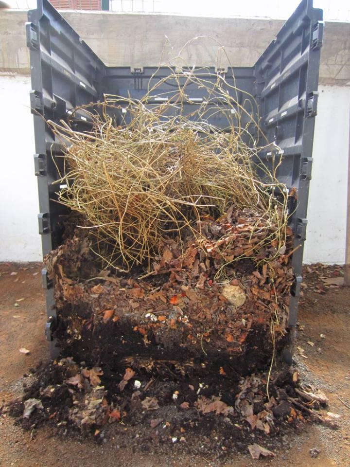 compost 55