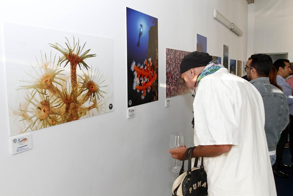 La exposición podrá contemplarse hasta el 26 de junio en Marina Lanzarote.